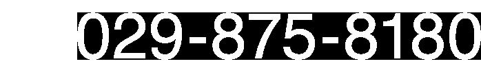 029-875-8180